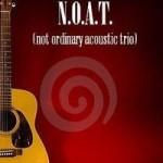 NOAT not ordinary acustic trio trapani
