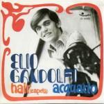 hair_capelli_elio_gandolfi_45_giri